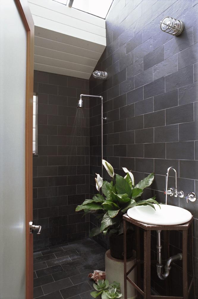 Daydream Diary: the skylit shower